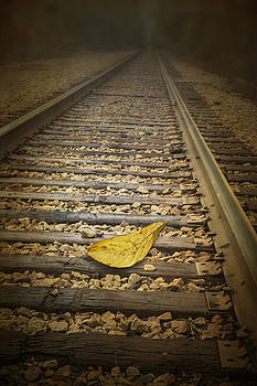 Randall Nyhof - Fallen Yellow Autumn Leaf on the Railroad Tracks