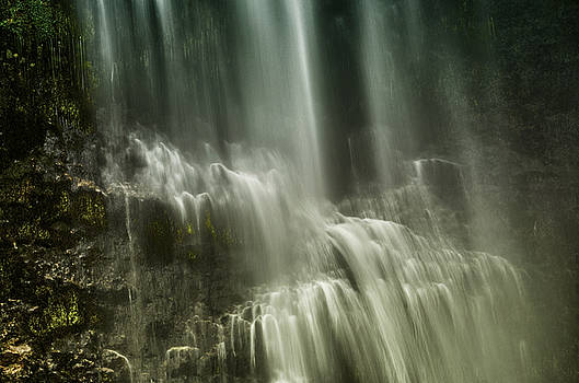 Falling in the Light by Richard Espenant
