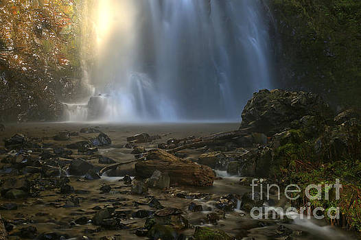 Adam Jewell - Falling Into The Creek