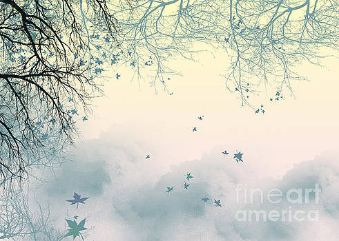 Falling Leaves by Trilby Cole