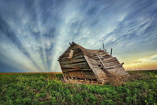 Falling Rays by Thomas Zimmerman