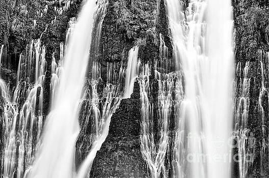 Jamie Pham - Falling Water