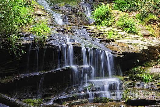 Jill Lang - Falling Water
