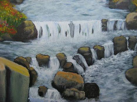 Falling Waters by Betty Reineke
