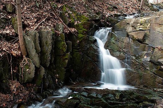 Falling Waters in February II by Jeff Severson