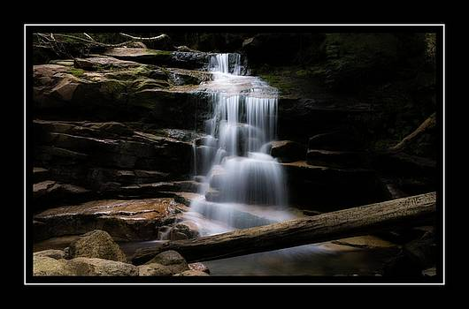 Falling Waters Trail by Sherman Perry