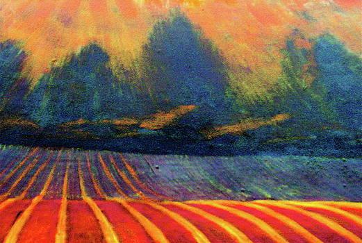 Fallow Field 2 by Jeanette Jarmon