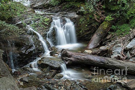 Rod Wiens - Falls and Logs
