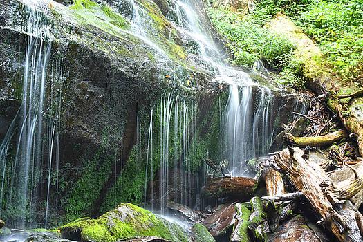 Falls Branch Falls  by Tim Ford
