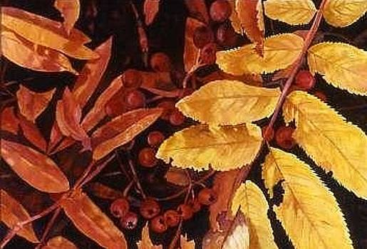 Fall's Colors by Wendy Hill