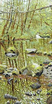 Falls Creek Pool by Andrea Benson