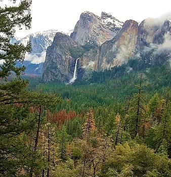 Falls in Yosemite B by Phyllis Spoor