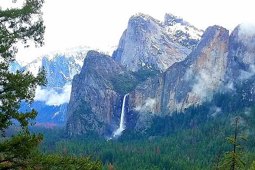 Falls in Yosemite C by Phyllis Spoor