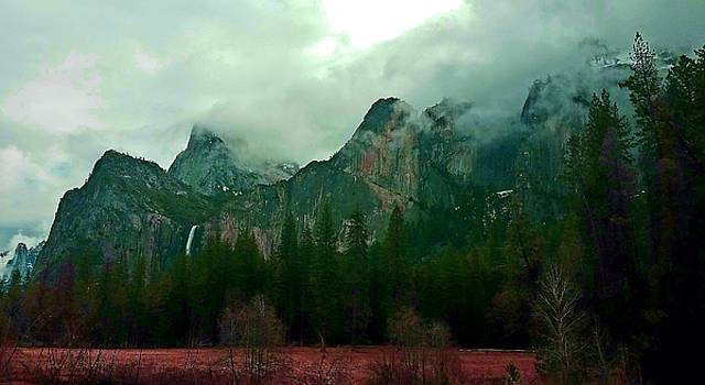 Falls in Yosemite D by Phyllis Spoor