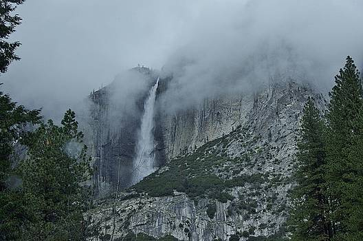 Falls in Yosemite by Phyllis Spoor