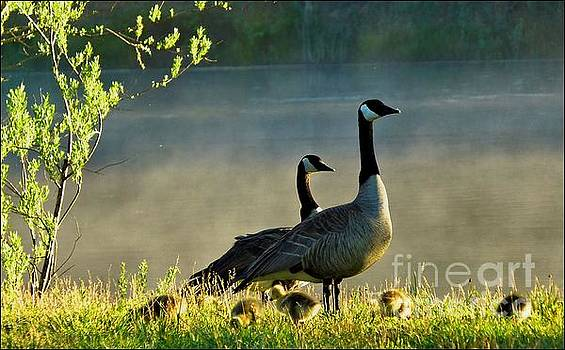Family Gathering by Julia Hassett