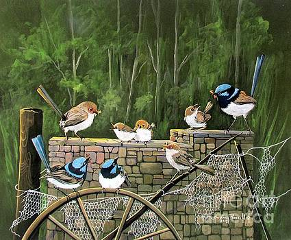 Family of Fairy Wrens on a stone wall by Audrey Russill