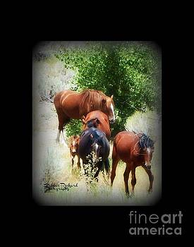 Family of Wild Mustangs by Bobbee Rickard