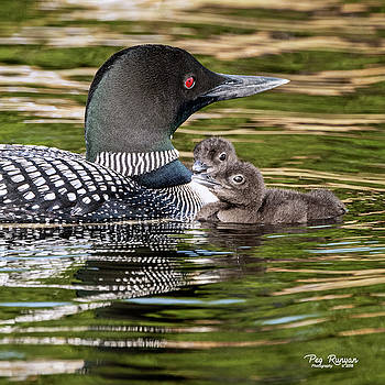 Family Time by Peg Runyan