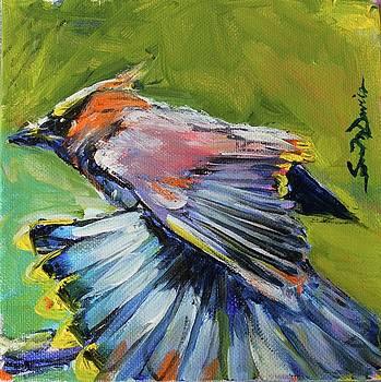 Fancy Dancer by Susan Davies