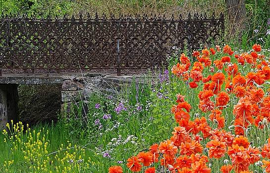 Fancy Foot Bridge and Poppies by Stephanie Calhoun