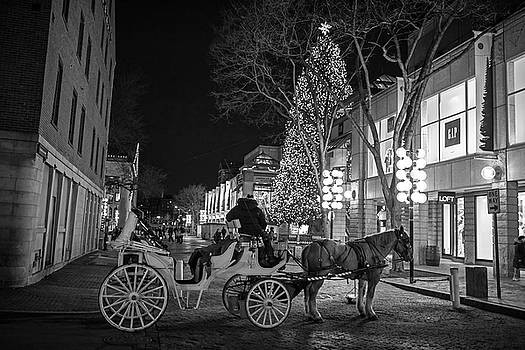 Toby McGuire - Faneuil Hall Horse and Carriage at Christmas Boston MA Black and White