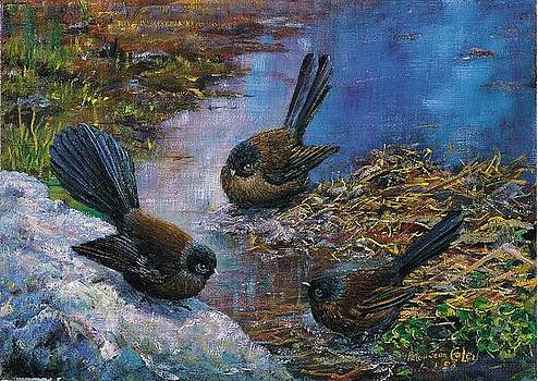 Fantails around Water by Peter Jean Caley