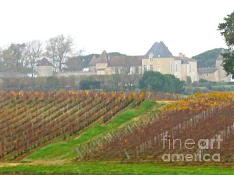 Fantastic French Vineyard by Barbara Plattenburg