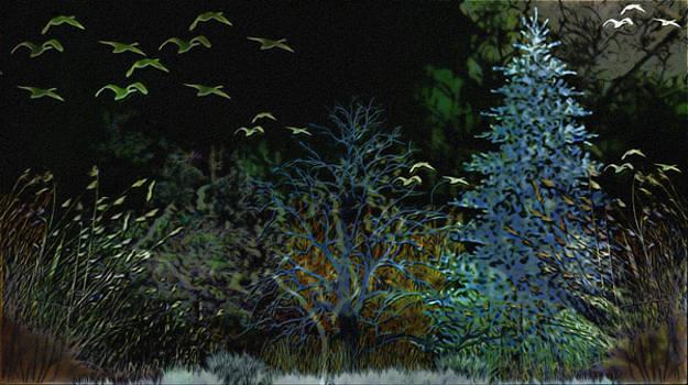 Fantasy Forest  by Philip A Swiderski Jr