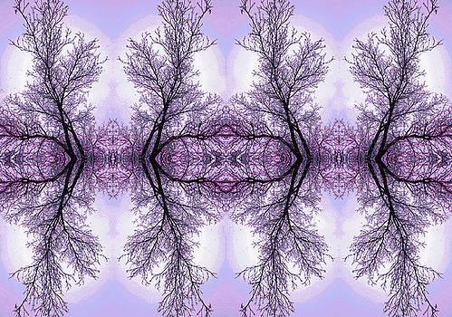 James Steele - Fantasy In Purple
