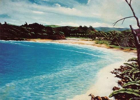 Fantasy Island by Leif Thor Kvammen