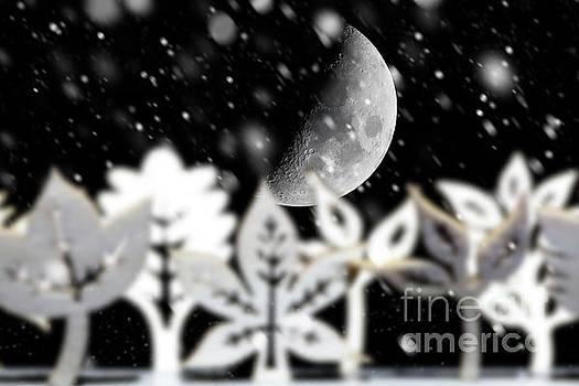 Fantasy winter snow scene with moon by Simon Bratt Photography LRPS