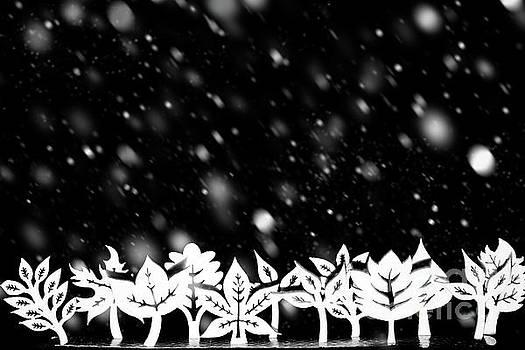 Fantasy winter snow tree line by Simon Bratt Photography LRPS