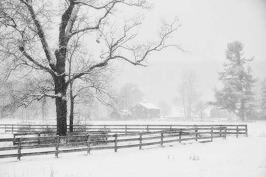 Farm And Fence line in winter by Rod Flauhaus