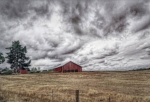 Bonnie Bruno - Farm Country