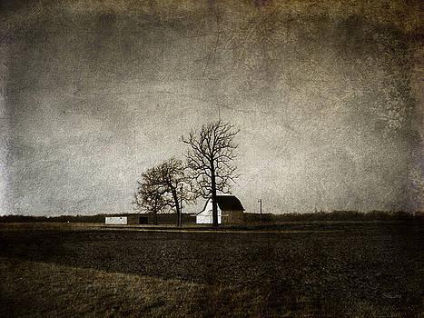 Farm by Cynthia Lassiter