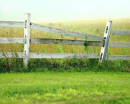 Farm Fence by Brian Pflanz