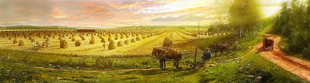 Mike Savad - Farm - Finland - Field of hope 1899