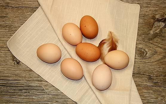 Farm Fresh Eggs by Sheila Brown