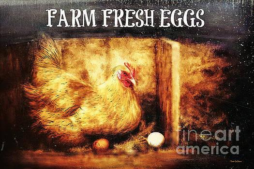 Farm Fresh Eggs by Tina LeCour