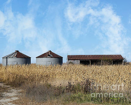 Farm Grain Bins And Shed by Kathy M Krause
