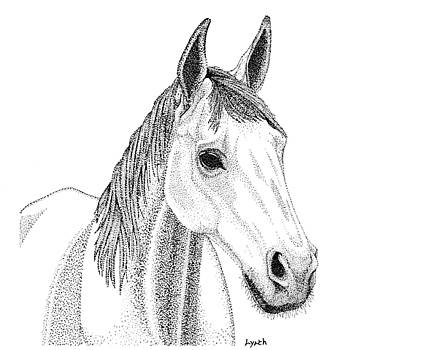 Farm Horse in Pointillism by Gerald Lynch