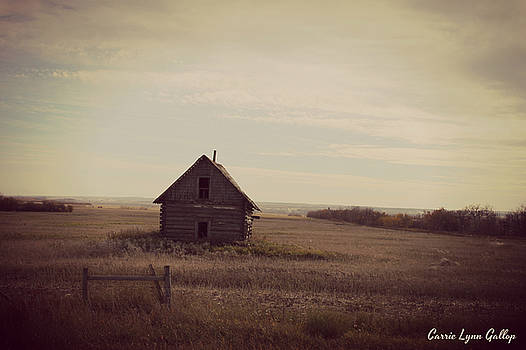 Farm House by Carrie Gallop