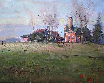 Ylli Haruni - Farm in Georgetown