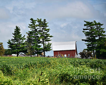 Farm Near Shenandoah by Kathy M Krause
