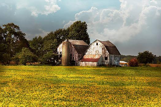 Mike Savad - Farm - Ohio - Broken dreams