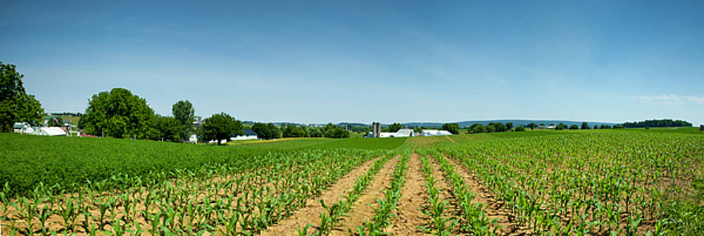 Farm Panorama by Ed Cilley