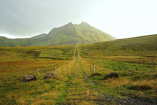 Farm Path,  Iceland,  2015 by Joseph Duba