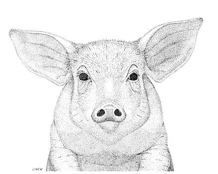 Farm Pig in Pointillism by Gerald Lynch