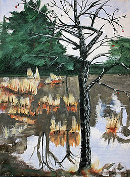 Farm Pond and Persimmon Tree by Randy Bell